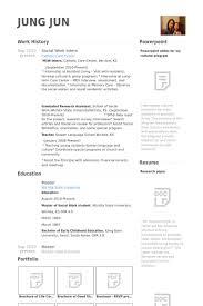 Social Work Intern Resume Samples