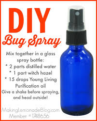 homemade diy bug spray using essential oils and which oils to use