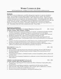 Sample Resume For Executive Assistant To Ceo Lovely Templates Summary