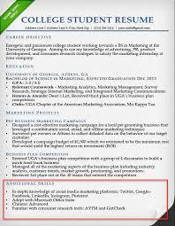 College Student Internship Resume Skills Section Example
