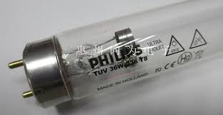 philips tuv 36w uv c germicidal l at rs 900 number