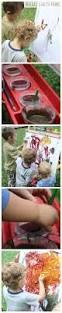 Crayola Bathtub Fingerpaint Soap Non Toxic by The 25 Best Non Toxic Paint Ideas On Pinterest Homemade