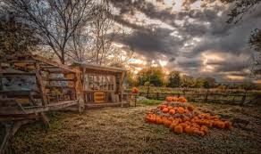 Chatfield Pumpkin Patch Hours by Pumpkin Patches In And Around Denver 2017 The Denver Ear