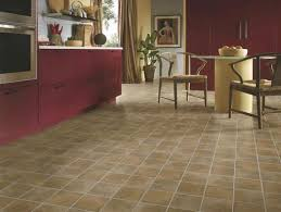 Armstrong Groutable Vinyl Tile Crescendo by Bodden Bay 12 In X 12 In Terra Cotta Peel And Stick Vinyl Arctic