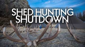 Shed Hunting Utah 2017 by Shed Hunting Shutdown Well Not Really But Kind Of Eastmans