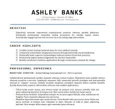 Simple Cv Template Word Doc