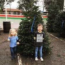 Christmas Tree Shop Portland Maine by Toby U0027s Christmas Trees 15 Reviews Christmas Trees 301 N San