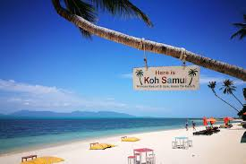 100 W Hotel Koh Samui Thailand Mimosa Resort Spa 4 Star Beachfront Resort