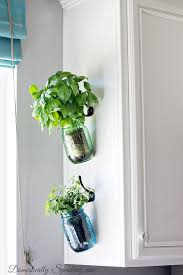 Hanging Fresh Herbs Not A Mason Jar Person But Plenty Of Other Beautiful Options