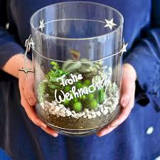 mini terrarium mit sukkulenten selbermachen auf mrsgreenhouse de