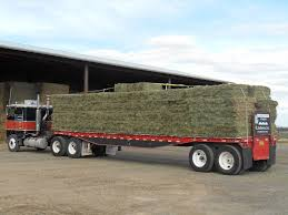 Hay Reports - OHFA Hay For Sale In Boon Michigan Boonville Map Outstanding Dreams Alpaca Farm Phil Liske Straw Richs Cnection Peterbilt 379 At Truckin Kids 2013 Youtube Bruckners Bruckner Truck Sales Lorry Stock Photos Images Alamy Mitsubishi Raider Wikipedia For Lubbock Tx Freightliner Western Star Barmedman Motors Cars Sale In Riverina New South Wales On Economy Mfg Dennis Farms Equipment Auction The Wendt Group Inc Land And