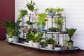 Plant stands indoor also with a plant pedestal also with a outside