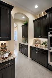 Kitchen Dark Cabinets Home Decor Fresh With And Light Granit