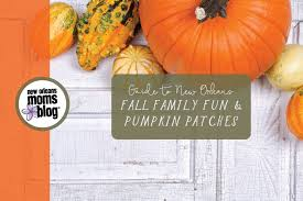 Nearest Pumpkin Patch Shop by 2017 Guide To New Orleans Area Pumpkin Patches