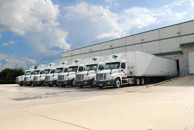100 Star Trucking Company Distribution Systems Inc LinkedIn