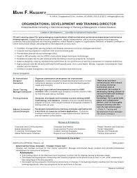 Sample Objectives For Resumes Beautiful Resume Objective Sales New Examples Fresh