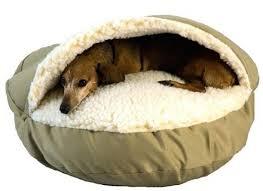 sofas center serta couch dog pet beds sofa and futonsserta dog