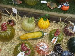 South San Jose Pumpkin Patch by Bay Area Glass Institute San Jose Ca Top Tips Before You Go