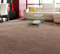 Will Dark Carpet Suit For The Living Room