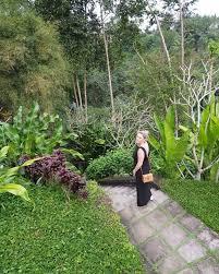 100 Hanging Garden Hotel Comoumaubudbalivalleypathway Fly Stay Luxe