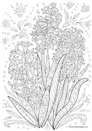 Hyacinth Doodle Colouring Page