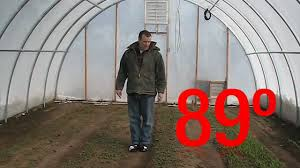 Winter Growing In A Greenhouse - YouTube 484 Best Gardening Ideas Images On Pinterest Garden Tips Best 25 Winter Greenhouse Ideas Vegetables Seed Saving Caleb Warnock 9781462113422 Amazoncom Books Small Patio Urban Backyard Slide Landscaping Designs Renaissance With Greenhouse Design Pafighting Fall Lawn Uamp Gardening The Year Round Harvest Trending Vegetable This Is What Buy Vegetables Fresh And Simple In Any Plants Home Ipirations