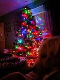 Fiber Optic Christmas Tree 7ft by Led Christmas Tree Lights Roselawnlutheran
