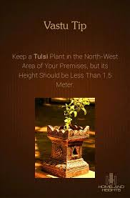 Plants In Bathroom According To Vastu by 81 Best Vastu Shastra Images On Pinterest Vastu Shastra Feng
