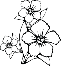 Free Printable Summer Flowers Coloring Pages Realistic Flower To