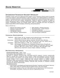 IT Resume Sample Professional Resume Examples