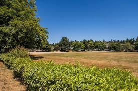 Magnolia Playfield Parks