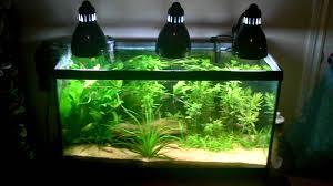clip on l aquarium lighting