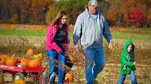 Pumpkin Festival Cleveland Ohio by Fall Family Fun Cleveland Area Pumpkin Patches Hay Rides And