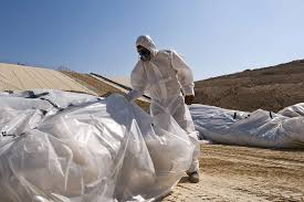 asbestentsorgung in der ch kosten gefahren pflichten