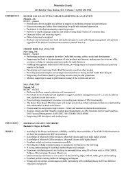 Download SAS Analyst Resume Sample As Image File