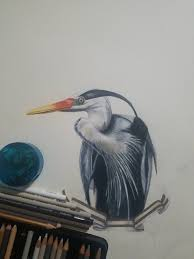 Heron And Ribbon Prismacolor Premiers
