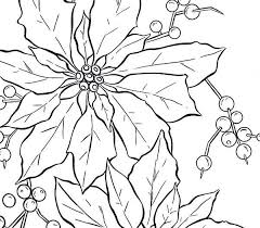 Poinsettia Fruit Coloring Page