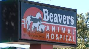 lawton animal hospital on steals decorations from lawton vet clinic