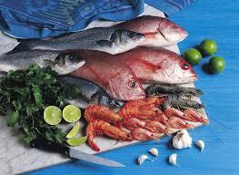 poisson a cuisiner cuisiner le poisson réponse à tout