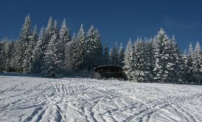 chambre d hote allemagne foret chambre d hote allemagne foret 3 chambre dh244tes le chalet