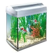 aquarium equipe achat vente aquarium equipe pas cher cdiscount