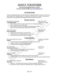 Cv Template Of Sample College Related Post