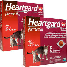 heartgard for cats heartgard for cats up to 5 lbs 12 chew tabs
