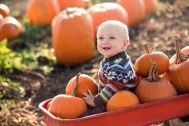Jumbos Pumpkin Patch Map by Activities In Fall Festival Fall Farm Fun Cross E Ranch