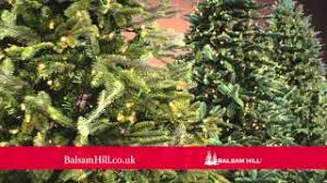 Balsam Hill Premium Artificial Christmas Trees by Cheap Balsam Christmas Trees Find Balsam Christmas Trees Deals On