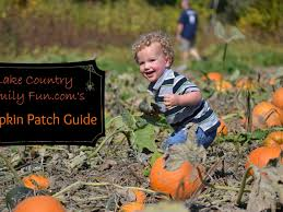 Southeast Wisconsin Pumpkin Patches by It Is Pumpkin Time In Wisconsin Waukesha Wi Patch