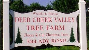 Christmas Tree Pickup Baltimore County by Baltimore And Central Maryland Christmas Tree Farms Choose And