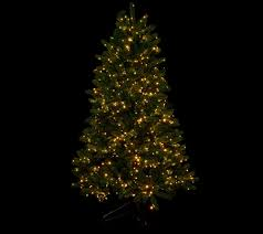Prelit Christmas Tree Sets Itself Up by Santa U0027s Best 6 5 U0027 Starry Light Microlight Tree W Flip Leds Page