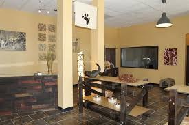 Safari Living Room Decor by Safari Bedroom Decorating Ideas