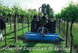 chambre d agriculture de vaucluse expérimentation une couverture végétale pour remplacer le